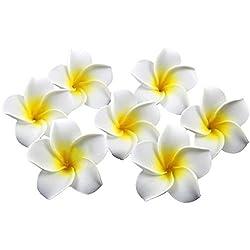 HugeStore 100er 6CM Plumeria Hawaiian Frangipani Schaumblüte für Hochzeit Party Dekoration Weiß