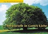 Verwurzelt in Gottes Liebe: Das Bäume Postkartenbuch -
