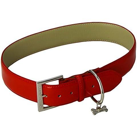 Doggy Cose da 20 pollici / 50 centimetri di brevetto collare, Rosso