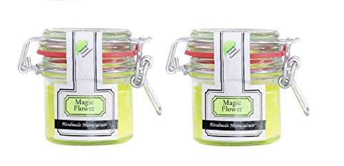Parfüme Boutique 1101367MF Vintage Duftglas S Magic Flower Duftkerze im Glas, hellgrün, 10 x 10 x 8,5 cm, 2er Set