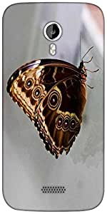 Snoogg butterfly blue morpho Designer Protective Back Case Cover For Micromax A116
