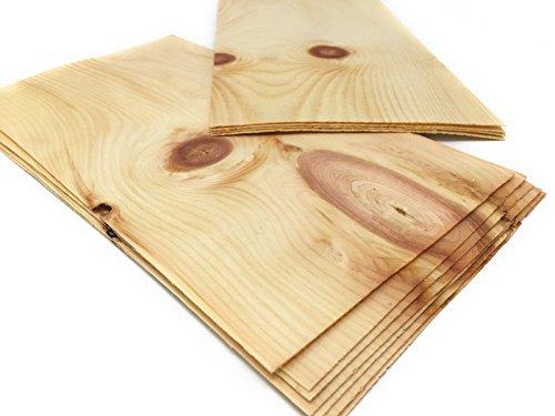 4-5 Furniere Holzarten wie z.B. Eiche, Buche, Nussbaum, Mahagoni. Furnier geeignet für Modellbau, Ausbesserungsarbeiten, Fotografie, Geschenk, Restauration, DIY, basteln, Intarsien, Schmuck (Zirbe) - Eichen-blatt 5