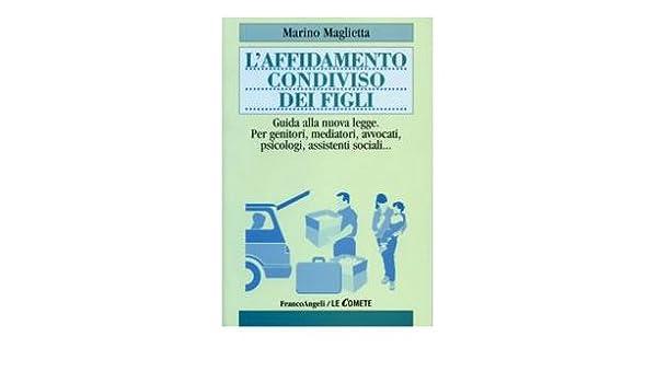 Affido Condiviso Calendario Visite.Amazon It L Affidamento Condiviso Dei Figli Guida Alla