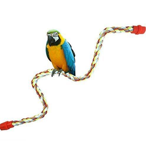 Jaula juguete ajustable colgar loros pájaros