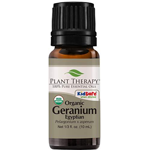Geranio egipcio Orgánica 10 ml aceite esencial 100%