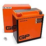 GP-PRO GTX16-BS 12V 14Ah GEL-Batterie (Ähnlich YTX16-BS / 81600) (Wartungsfrei & Versiegelt) Akkumulator Motorrad Motorradbatterie