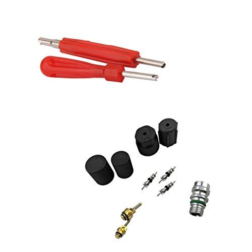 MagiDeal 12x Ventile Ventilkerne Ventilkappe Ventilentferner Ventileinsatz Reparatur Kit für Kfz-Klimaanlage