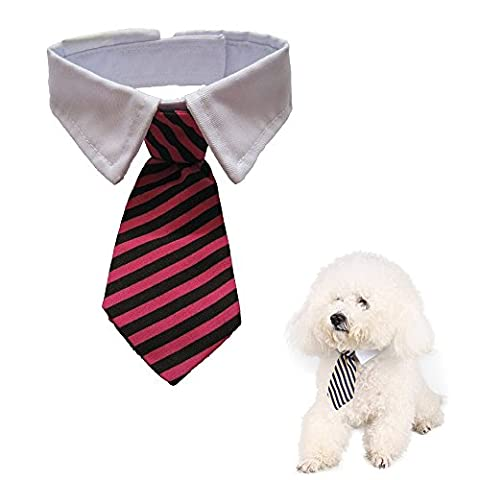 Namsan Twill Cotton Tie Small Dogs Cats Puppy Tie Neck Tie