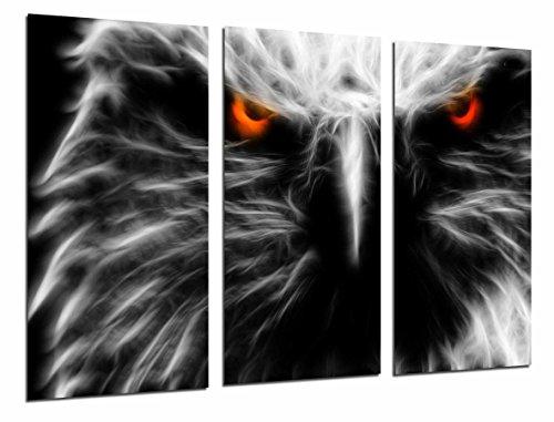 Cuadro Moderno Fotografico Animal Aguila Ojos de Fuego, Vida Salvaje, 97 x 63 cm, ref. 26792