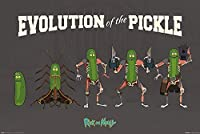 Cartoon Network Rick and Morty, Evolution of the Pickle Maxi Póster, multicol...