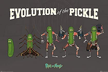Todos amamos a esta peculiar forma de Rick, por que no tener una?