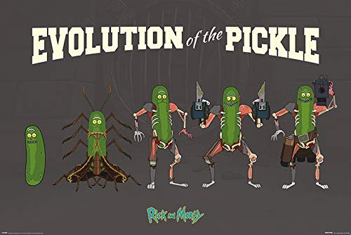 Cartoon Network Rick and Morty, Evolution of the Pickle Maxi Póster, multicolor, 61 x 91,5 cm