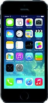 """flat.design Filzhülle """"Lisboa"""" für Apple iPhone 5s - passgenaue Handytasche aus 100% Wollfilz (anthrazit) - made in Germany Schutz Case für Apple iPhone 5s blaue Blätter - anthrazit"""