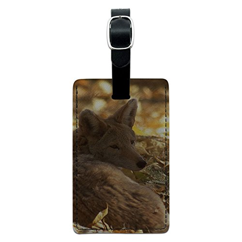 Coyote–Wild Hund Leder Gepäck ID Tag Koffer Handgepäck (Coyote Leder)