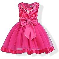 FXFAN Vestido de Encaje de Flores Niña Vestido de Fiesta Rosa Niños se Visten 2-12 Años de edadZHANGM (Color : Rosado, Tamaño : 150)