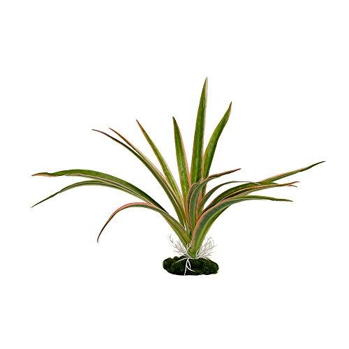 (Blue Ribbon Pink & Grün Dracaena häubling Farbe Burst Florals PVC beschichtet Pflanzen)