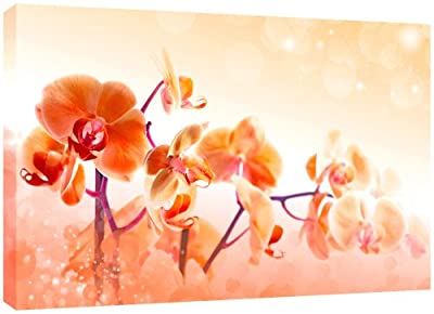 MOOL 32 x 22-inch Orange Peach Orchid Flower Canvas Wall Art Print