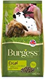 Burgess Excel Nuggets with Mint Adult Rabbit Food 10 kg
