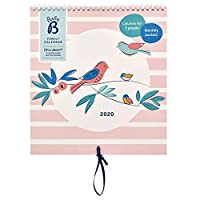 Busy B Family Calendar January to December 2020. Pink/Birds Month to View Calendar with 6 Columns, Monthly Pockets, Stickers & Holiday Planner
