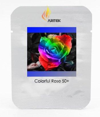 Colorful Graines Rose Semis Fleur du Rarest 'Rain Rainbow', Professional Pack, 50 graines / Paquet, Lumière Fragrant Garden Flower