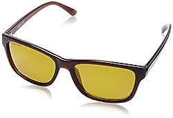 Fastrack UV Protected Wayfarer Mens Sunglasses - (P357BR6P|41|Brown Color)