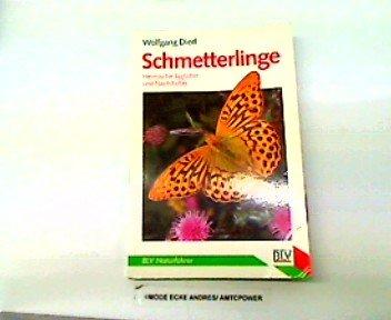 Schmetterlinge. Heimische Tagfalter und Nachtfalter