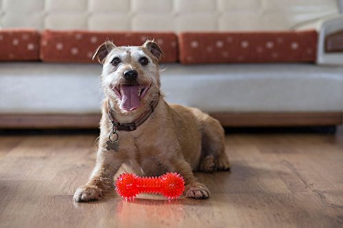 Gor-Pets-Flex-Squeaky-Dumbbell-Dog-Chew-Toy-Super-Resistant-155-cm