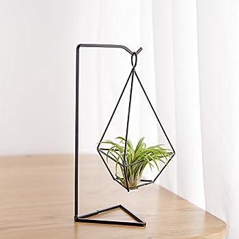 Mkouo h ngende metall tillandsia air pflanze luftpflanzen for Schwarze blumentopfe
