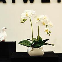 Sia plantas y flores artificiales for Sia decoracion