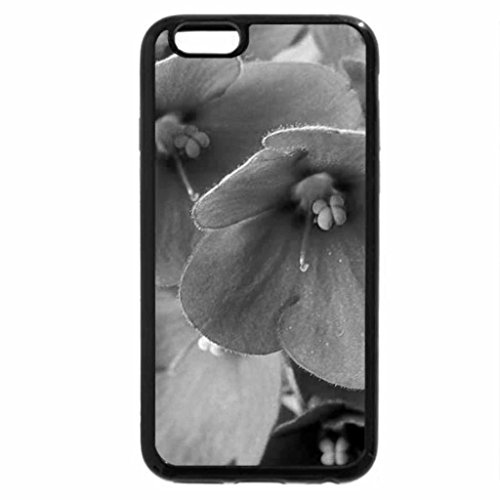 iphone-6s-plus-coque-iphone-6plus-coque-noir-et-blanc-violet-africain-motif-marguerites