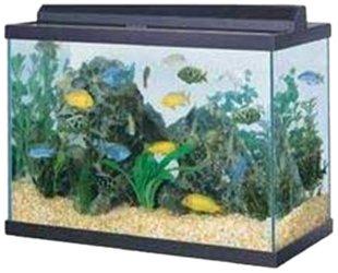 75gal Aquarium Black W/1 Megaflow