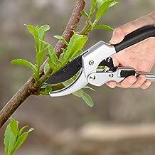 Shopmeeko Valentino Rossi: Garden Fruit Tree Recorte Scissor injerto Corte árbol y Herramientas de Corte