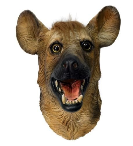 The Rubber Plantation TM 619219293228 Hyäne Maske Wild Animal Hund Overhead Latex Zoo Party Halloween Accessoire von Wolf Full Head by Coopers Fancy Kleid, Unisex, ONE SIZE