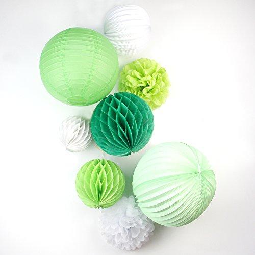 SUNBEAUTY Verde Series Pacco 8 pezzi pom pom fiori e palle di carta Casa Fiesta pom pom sposa palle di decorazione feste di compleanno Hanging Festival di San Vlentines