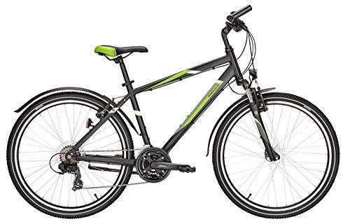 Jugend Fahrrad 26 Zoll schwarz - Pegasus Avanti Sport Jungen Trekkingrad - Shimano Kettenschaltung, STVZO Beleuchtung