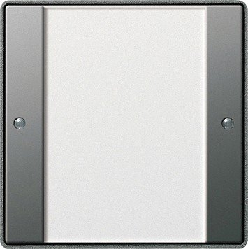 GIRA 213120 Acero inoxidable, Transparente interruptor de luz - interruptores de luz...