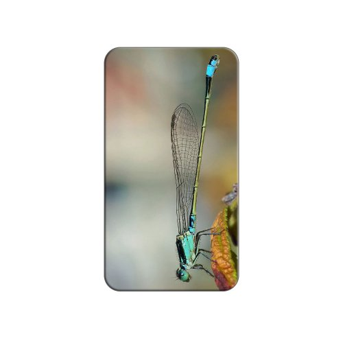 Blau–Libelle Dragon Fly Metall Revers Hat Shirt Handtasche Pin Krawattennadel Pinback (Knopf Shirt Fly)