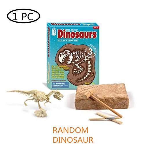 Grabe Spielzeug Heraus Fossiles Grabspielzeug Kinder Dinosaurier Dig Spielzeug Ausgrabungs-Set Für Dinosaurier-Fossilien Dig Out Fossil Palaeontology Lernspielzeug Mineral ()