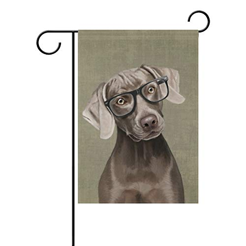 e mit Brille, 30,5 x 45,7 cm, doppelseitig, Hofdekoration, Polyester, Outddor Flagge, Home Party, Polyester, Multi, 12x18(in) ()