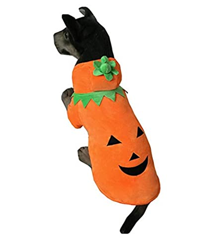 Costumes Holloween Couple - Ranphy Medium pour animal domestique/Chat Manteau pour