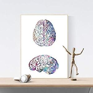 EBONP Wand dekorative Leinwand Malerei Menschliche Gehirn-Anatomie-buntes Aquarell-Wand-Kunst-Biologie-Wissenschafts…
