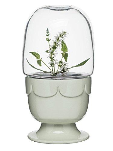Sagaform Greenhouse Pflanzbehälter, Keramik, Salbeigrün, 23,3 cm