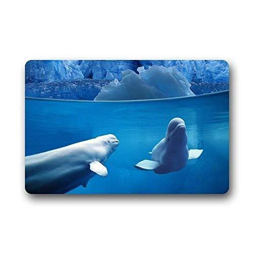 surce Tapis Blanc de Tapis de Baleine de Baleine de béluga à l'extérieur/intérieur Lavable à la Machine d'intérieur de Taille 40 × 60cm