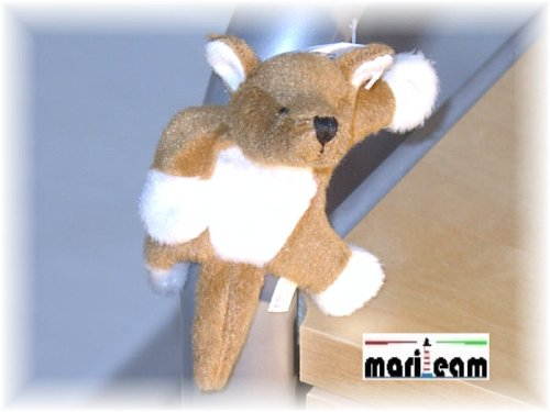 pillitaps-16154-kangourou-sina-aimant-animaux-en-peluche-de-10-cm