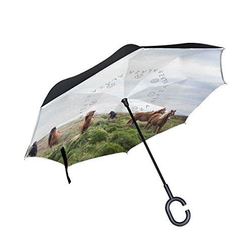 isaoa Große Schirm Regenschirm Winddicht Doppelschichtige Konstruktion seitenverkehrt Faltbarer Regenschirm für Auto Regen Außeneinsatz, C-förmigem Henkel Regenschirm braun Pferde grün Field Regenschirm für Frauen und M