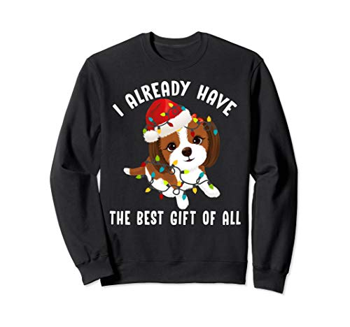 I Already Have The Best Gift Of All Cute Shih Tzu Lover Gift Sweatshirt -