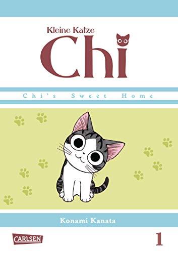Kleine Katze Chi 1 (1)