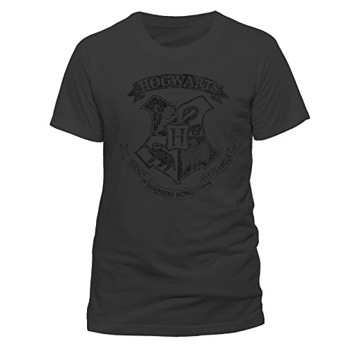 Harry Potter Herren T-Shirt Distressed Hogwarts M, Grau-Grau (Anthrazit), Medium (Distressed Baumwolle T-shirt)