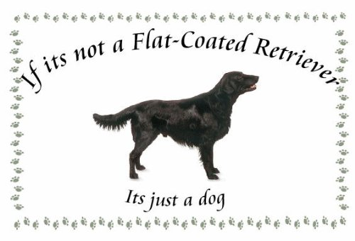 Flat Coated Retriever – Novelty Dog keyrings – If its not