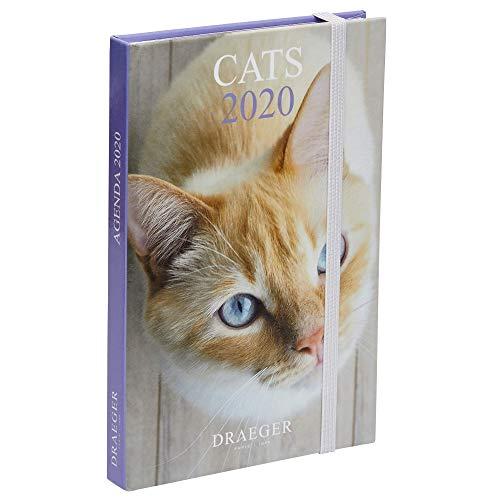 Draeger - Pocket Diary 2020 Pratik Chats - Mini Diary 2020 Illustrated Chats - Tapa rígida - Cierre elástico - Marcador de tela de raso - Formato diario de gato 9,5 x 14,5 cm